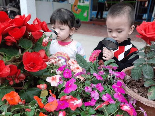 Hoạt động khám phá môi trường xung quanh của các con