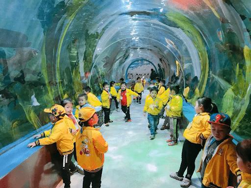 Học sinh trường mầm non Uy Nỗ đi tham quan dã ngoại tại Thiên đường Bảo Sơn