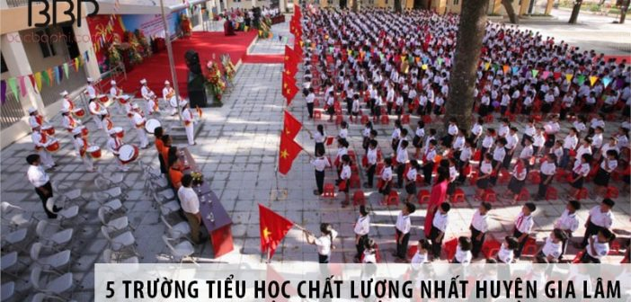 Top 5 trường tiểu học chất lượng nhất huyện Gia Lâm