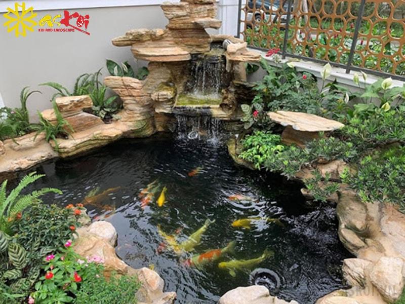Hồ cá Koi mini xinh xắn tại nhà