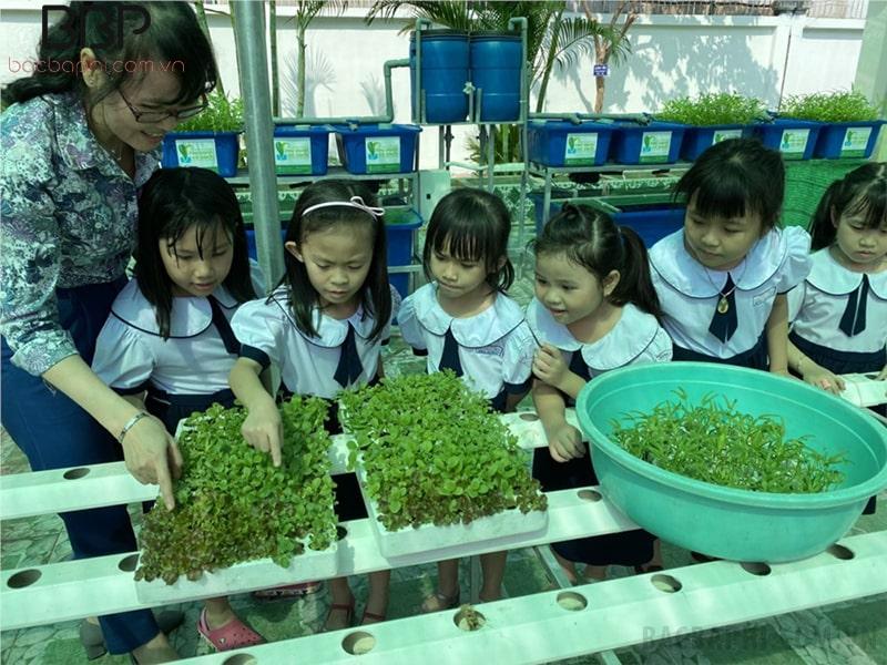 Hoạt động trải nghiệm với thiên nhiên của cô trò trường tiểu học Lê Văn Việt
