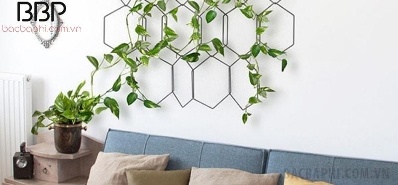 Một cách trồng cây dây leo trong nhà độc đáo - làm khung trang trí phòng khách