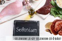 Selenium là gì? Selenium có tác dụng gì? Selenium có ở đâu?